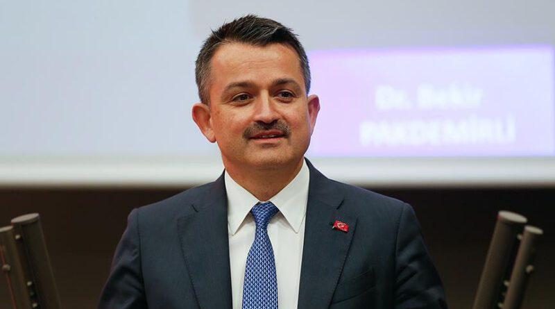 """Bakan Pakdemirli: """"3,2 milyon lira fındık üreticilerimizin hesaplarına yatırıldı"""" Ekonomi"""